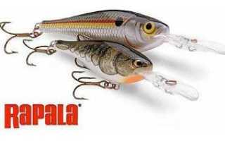 Воблеры Rapala – особенности, разновидности моделей серии, их параметры