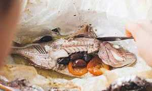 Диетические (нежирные) сорта рыб