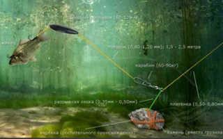 Как ловить сома на подводный поплавок