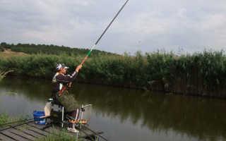 Секреты ловли рыбы на удочку с поплавком