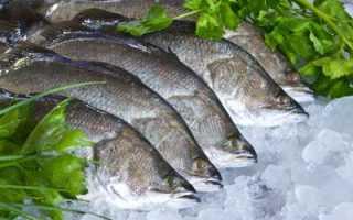 Как приготовить рыбу сибас