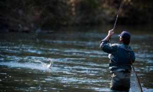 Эхолоты для ловли с берега и лодки: обзор, отзывы и использование
