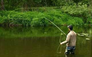 Нахлыстовая рыбалка – не самое легкое, но очень увлекательное дело!