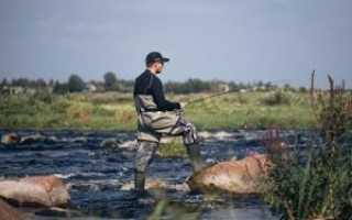 Полукомбинезоны для рыбалки – из какого материала изготовлены, швы, размеры, практичность