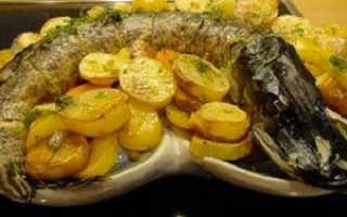 Щука с картофелем в духовке