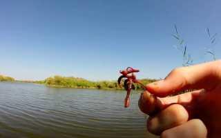 Раскрываем секреты ловли окуня на червя