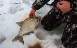Рыбалка на комбайн зимой