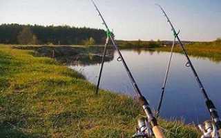 Фидерные оснастки для ловли на течении