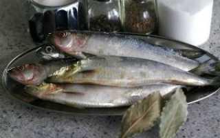 Тузлук для засолки рыбы