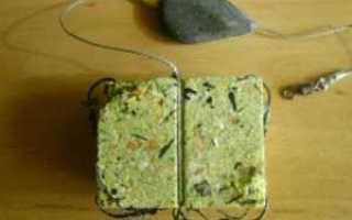 Ловля сазана и карпа на макушатник